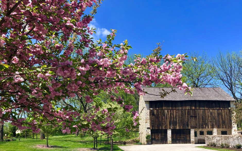 Barn wedding,Valley Forge party venue, Chester County Barn ...